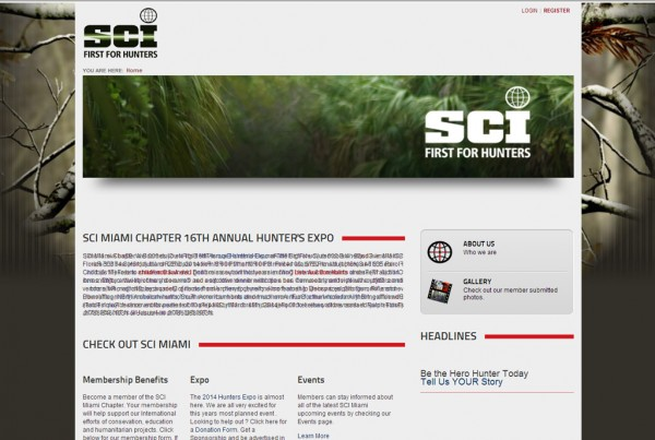 Web Design for SCI Miami Chapter