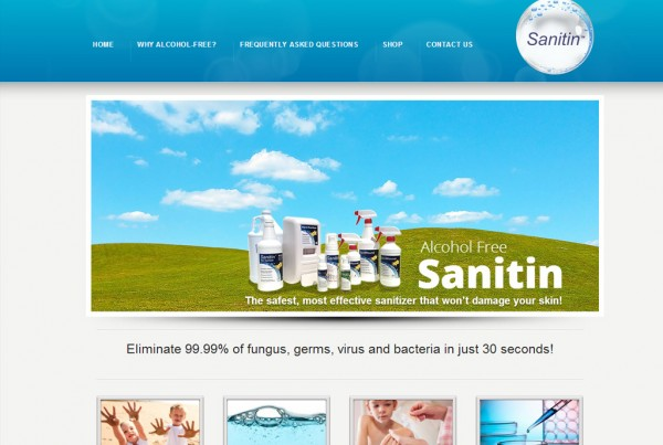 Web Design for Sanitin