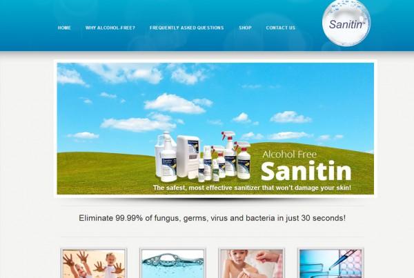 Web Design for Sanitin